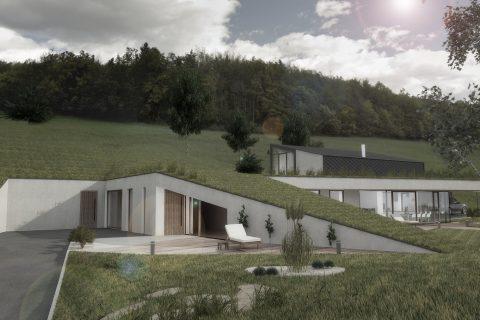 House P - KUB arhitektura